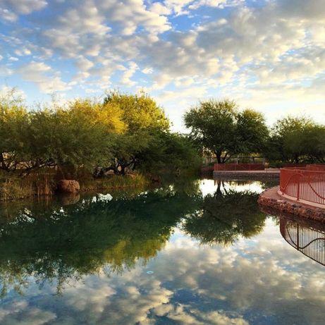 Early morning in Arizona